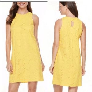 Dress Hope & Harlow size 6 pre owned